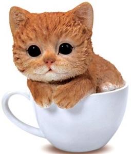 GINGER KITTEN IN TEA CUP MONEY BOX 15CM