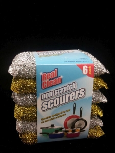 REAL CLEAN NON SCRATCH SCOURER 6PK